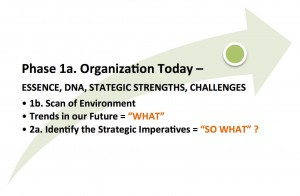 Phase 1a. Organization Today. Essence, DNA, Strategic Strengths, Challenges.
