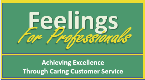 Feelings-for-Professionals-Delfi-Brochure-LFC