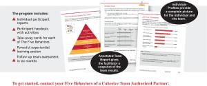 Five Behaviors of a Cohesive Team brochure